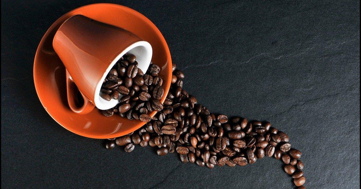 Guia do café: conheça os grãos
